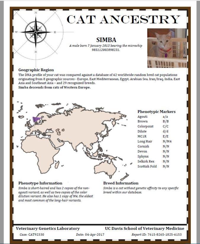 simba ancestry